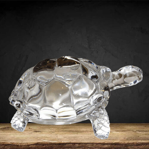 Crystal Turtle – क्रिस्टल कछुआ