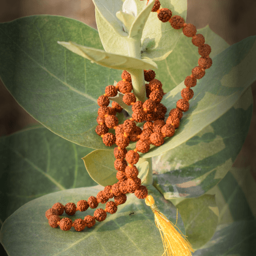Rudraksha Mala – 1