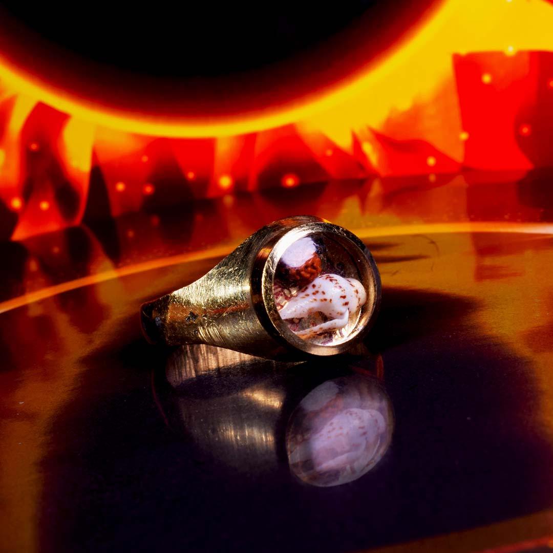 Online Original Trishakti Ring