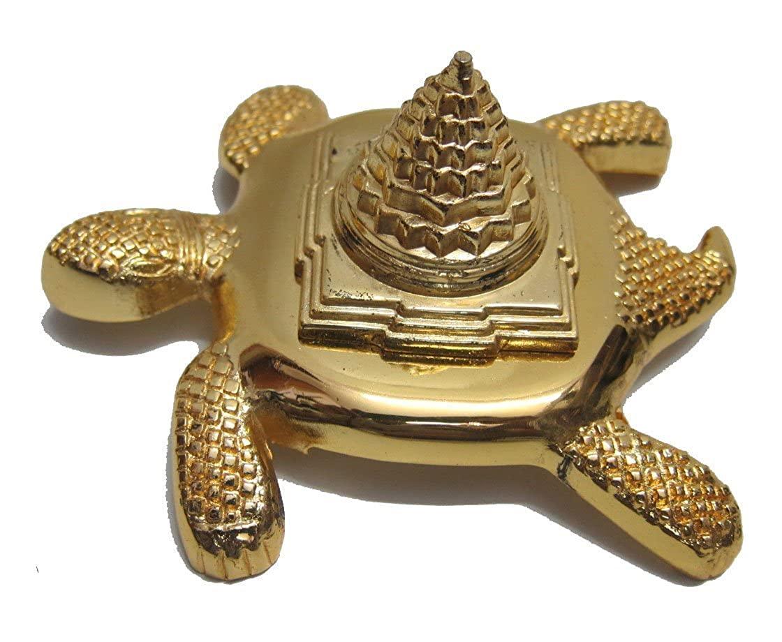 Buy Meru Kachua Golden Plated Combo Pack