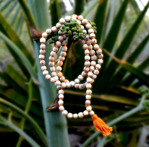 It is a product image of the original tulsi mala that has 108 beads garland made up of tulsi leaves hanging on branches of the tree by the Prabhu Bhakti portal.