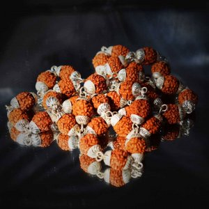 This is a product image of 5 Mukhi Silver rudraksha mala with silverware capping on every 108 beads